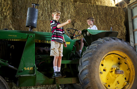 Boys climb on John Deere tractor on organic farm