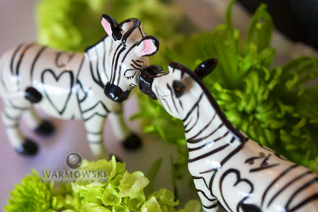 The week of the wedding, Audra found these kissing zebra salt-and-pepper shakers at Kirlin's Hallmark in Jacksonville.. There's a magnet on the girl zebra's cheek and one on the boy zebra's snout. They spent all night kissing in front of the cake. Copyright 2010 WarmowskiPhotography