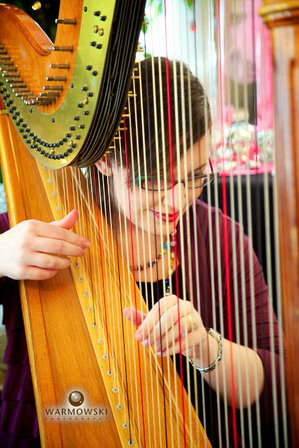 harpist plays as seen through strings, WarmowskiPhotography.com
