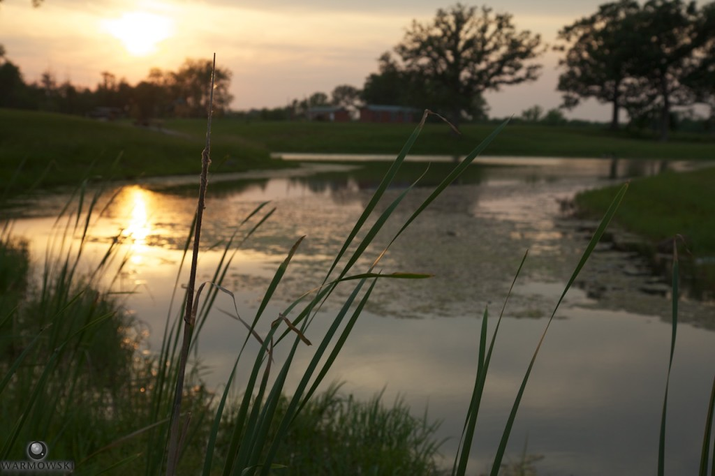 One of the ponds at Buena Vista Farms at sunset.
